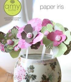 paper_iris_cover